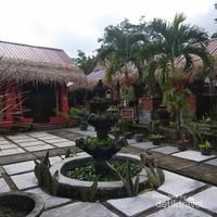 Pohon sejenis palem yang ditanam tumbuh segar di Halaman Kampoeng dadoek.