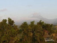 Gunung Wilis bersembunyi di balik kabut pagi.