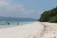 Pantai pasir putih Pulau Peucang yang mempesona.