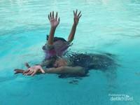 Ayuk slulup bebas di kolam.