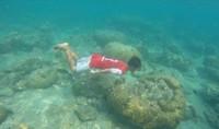 Kepulauan seribu, salah satu kabupaten di Jakarta yang tetdiri dari gugusan pulau-pulau. Tiap pulau memiliki daya tarik dan keindahan bawah laut yang melengkapi wisata Jakarta.