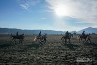 Keramah tamahan masyarakat Suku Tengger yang mengawal pengunjung mengelilingi keindahan Gunung Bromo menggunakan kuda.