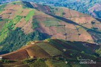 Pemandangan Objek Wisata Terasiring Panyaweuyan