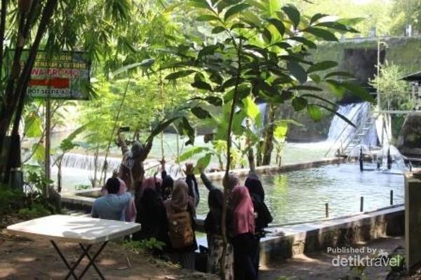 Para pengunjung mengabadikan moment foto