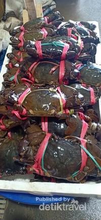Kepiting besar dan kecil