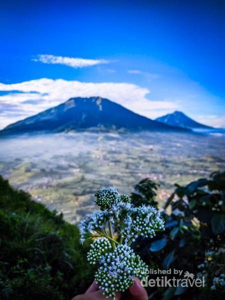Pemandangan gunung Merapi dari gunung Merbabu