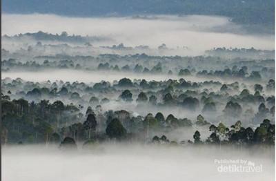 Begini Suasana Negeri di Atas Awan Liwa, Lampung