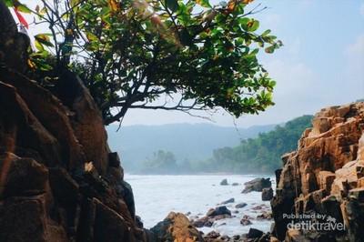Tak Seseram Namanya, Ada Pantai Gigi Hiu di Lampung