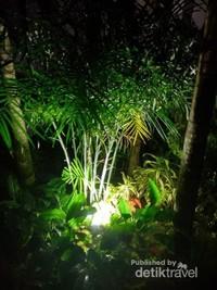 Indahnya gemerlap lampu diantara tanaman hijau yang ada di resort.
