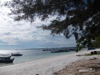 Rindangnya pohon di tepi Tanjung Kelayang.