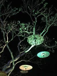 Festival Payung di Candi Borobudur(dtraveler Hanan Azka)