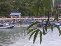 Banyaknya perahu yang persandar di tepian pantai.