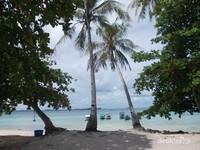Nyiur dan pepohonan yang memberikan keteduhan di sekitar pantai.