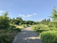 Ini adalah bagian lain dari taman Maxima, yaitu taman kupu-kupu.