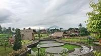 Alaminya bangunan dan pemandangan di Balkondes Kembanglimus. Foto: anonim