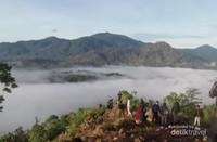 Bukit Tabalo Jambi