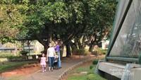 Pengunjung menikmati koleksi burung di Taman Burung TMII, Jakarta Timur