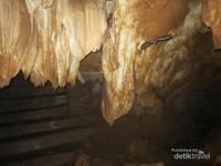Masuk mulut gua langsung disambut dengan banyaknya stalaktit dan kelelawar.