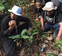 Tim ekspedisi menemukan banyak jejak berupa cakaran tanah, tapak, urine, dan sisa bulu karnivora besar jenis macan kumbang (Panthera pardus melas).