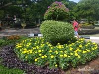 Bunga-bunga di taman merdeka dirawat dengan rapi.