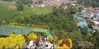 Dari atas bukit