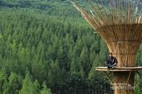 Latar belakang hutan pinus dan wahana yang menarik membuat foto lebih keren.