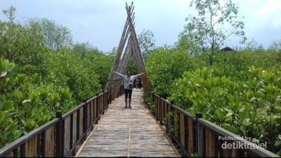 Ekowisata Hutan Mangrove Wonorejo, Sudut Adem di Surabaya