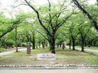 Suasana taman Osaka yang teduh oleh pepohonan hijau di bulan Juli.