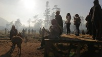 Siluet pengunjung menikmati pemandangan pagi di penangkaran rusa Ranca Upas