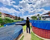 Di kolam budidaya Ikan Lele Eco Pesantren Daarut Tauhid. Sumber: dokumentasi pribadi