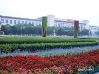indahnya bunga dengan aneka warna di Taman Tiannanmen.