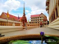 Bunga lotus ungu di Wat That