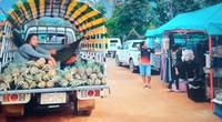 Suasana pasar pagi di Vang Vieng