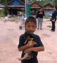 Pemilik anjing yang penyayang