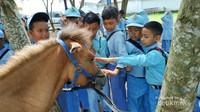 Belajar mengenal kuda.