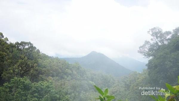 Kemegahan Gunung Gede Pangrango