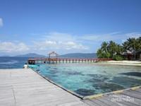 Kampung Arborek ini berada di Pulau Arborek, Meos Mansar, Kabupaten Raja Ampat, Provinsi Papua Barat.