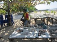 Pekerjaan di Kampung Arborek pada umumnya untuk laki-laki adalah melaut dan perempuan merajut dengan membuat souvenir berupa tas dan topi.