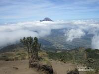 Gunung Merbabu punya 5 jalur pendakian, yaitu: Selo, Thekelan, Wekas, Cunthel dan Suwanting.