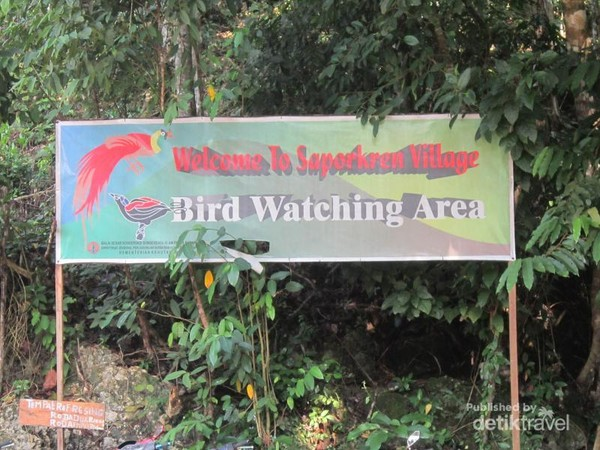 Bird Watching Saporkren ini berada di Desa Sarpokren, tepatnya di Sarpokren, Waigeo Selatan, Kabupaten Raja Ampat, Provinsi Papua Barat.
