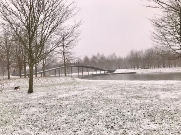 Area piknik di taman kota yang memutih karena salju