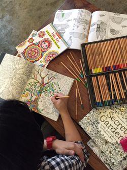 Yang Membuat Wanita Dewasa Terkena Demam Mewarnai Buku Gambar