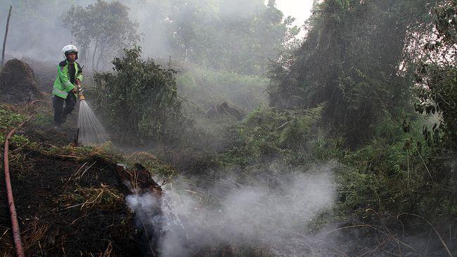 Satgas Operasi Gabungan untuk Kebakaran Hutan Dibentuk