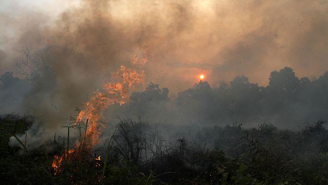 Walhi: Bencana Asap Bukti Kegagalan Korporasi Cegah Kebakaran