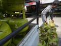 Proyek 2 Juta Tabung Elpiji Melon Pindad Tersendat di DPR