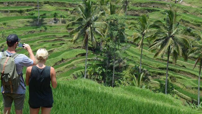 Indonesia Darurat Penulis Buku Perjalanan