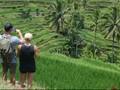 Pertumbuhan Wisatawan ke Dalam Negeri Meningkat