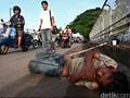 Wagub Jakarta Minta Polisi Usut Sindikat Penyalur Gelandangan