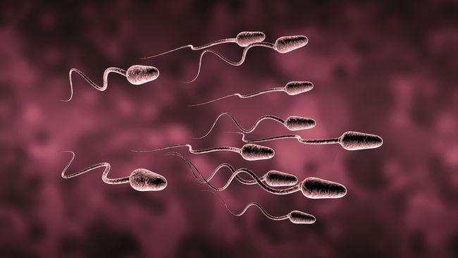 Pria Diseleksia dan Autis Dilarang Donor Sperma di Inggris