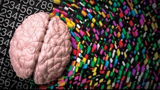 Dapatkah Teknologi Kedokteran Memindahkan Otak Manusia?